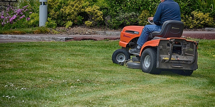 Risks Of Mowing Lawns Too Infrequently