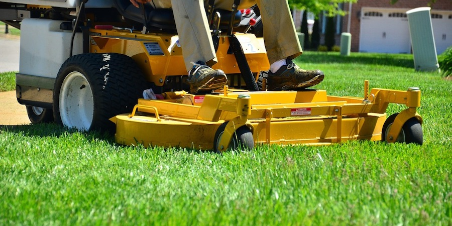 Avoid Using Weed Sprays After Lawn Mowing