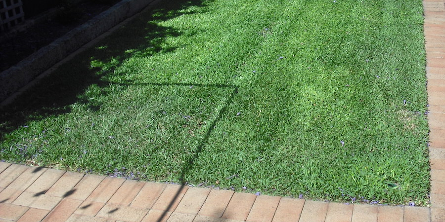 How To Install A New Lawn