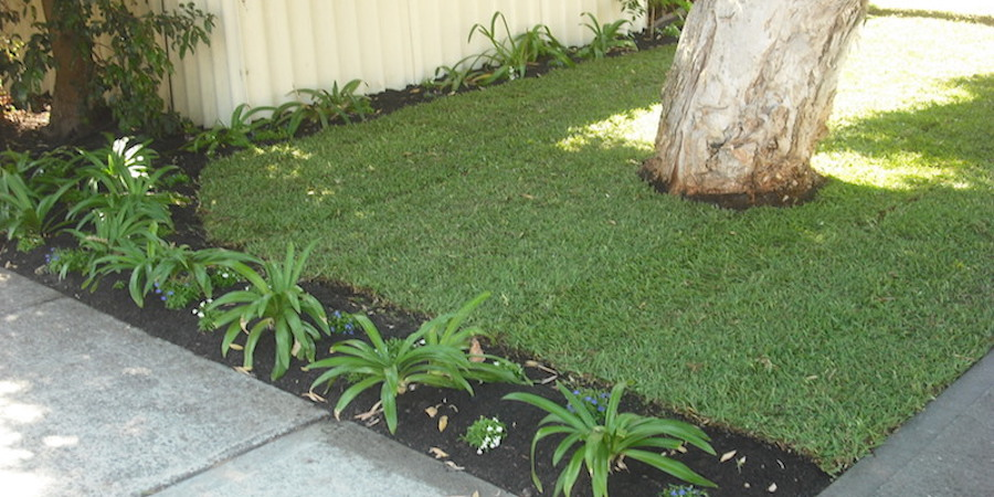 Remove Shade Over Lawns