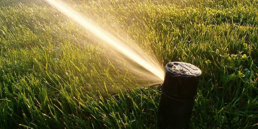Creating A Water Efficient Saint Augustine Lawn