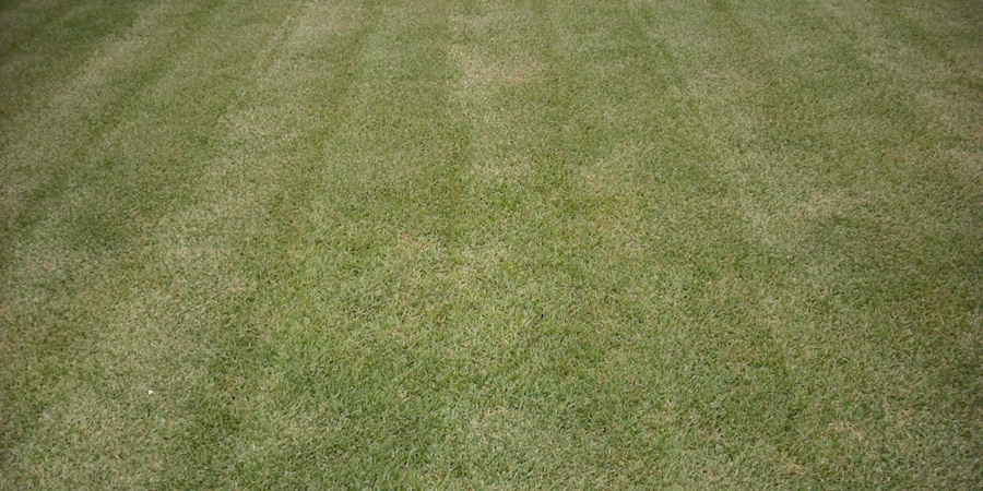 Scalping Lawns During Lawn Mowing